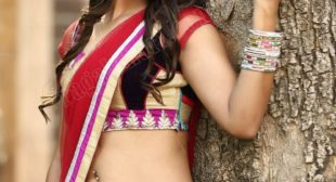 Escorts in Kolkata- The Top Figure and Beauty Combined